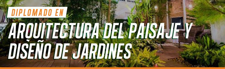 Diplomado en arquitectura del paisaje y dise o de jardines for Diseno de paisajes y jardines